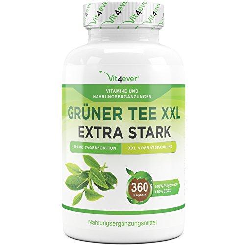 Grüner Tee XXL – 360 Kapseln – Green Tea – 3400 mg pro Tagesportion – 90 Tage Anwendung – Gewichtskontrolle – Grüntee Extrakt 20:1 – Vit4ever
