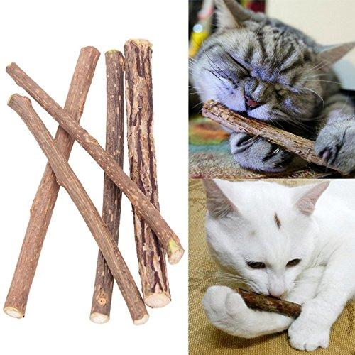 10 Stück Matatabi Katzen Kauhölzer Catnip Snacks Sticks Katzenminze Zähne Gesund Hygiene Zahnpflege Natur unterstützen die Natürliche Zahnpflege helfen spielerisch bei Mundgeruch & Zahnstein (10)