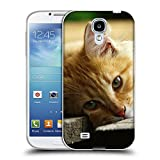 Just Phone Cases Schutz Hülle TPU Case Schutzhülle Silikon Tasche Dünn Transparent // V00004287 Katze liegend auf Holzbrettern // Samsung Galaxy S4 S IV SIV i9500