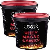 2X Whey Masse Gainer, Eiweißpulver, 3000g Eimer (6000g Gesamt),Erdbeere und Vanille, Protein Shake