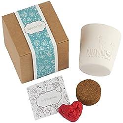 """Caja de regalo """"Corazón floreciente"""" set de cultivo Seedbombs – la decoración creativa"""