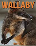 Wallaby: Children Book of Fun Facts & Amazing Photos on Animals in Nature - A Wonderful Wallaby Book for Kids aged 3-7