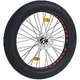 Coyote Fatbike Hinterrad komplett mit Reifen
