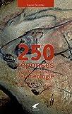250 réponses à vos questions sur l'archéologie