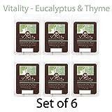Hosley Candle Company eucalipto & Timo (Vitality)-Set di cubi di cera, 6/2,5 oz each