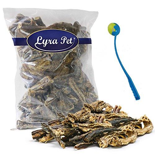 Lyra Pet 1 kg Rinderdörrfleisch Dörrfleisch Snack Rinderschlund + Ballschleuder