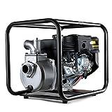 Greencut GWP8020 - Motobomba de agua con motor de 4 tiempos de 208cc y 7cv, caudal máximo de 30000l/h, aspiración a 7m y altura de bombeo 23m
