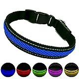 MASBRILL Leuchthalsband für Hunde aufladbar LED hundehalsband Blinkende Lichter mit USB verstellbar 3 Modells (S, Blau)