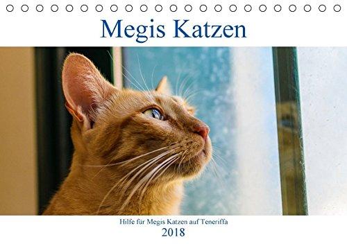 Megis Katzen (Tischkalender 2018 DIN A5 quer): Ein gutes Jahr für Katzenliebhaber (Monatskalender, 14 Seiten ) (CALVENDO Tiere) [Kalender] [Apr 16, 2017] Kovac, Megi