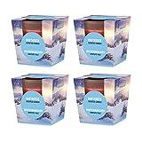 Pajoma 4X Duftkerzen Weihnachten im satinierten Glas in Edler Geschenkverpackung (Wintermärchen)