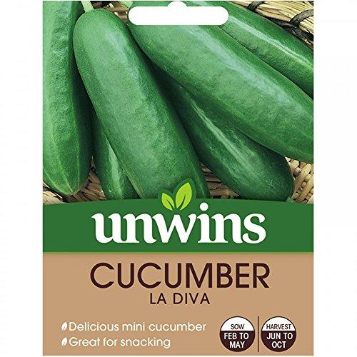 Unwins Graines De Concombre - La Diva