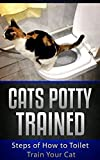 Cats Potty Trained: Steps of How to Toilet Train Your Cat