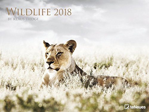 Wildlife Kalender 2018 - Tierkalender, Naturkalender, Posterkalender - 64 x 48 cm