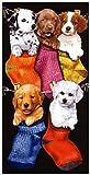 Badetuch, Strandtuch, Handtuch - 'Dogs in Socks' - Hunde in Socken - Hunde - XXL-Größe 170 x 90 cm - 100% BW - Made in America - 460 Gramm - NEU