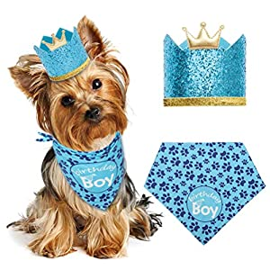 EXPAWLORER-Dog-Birthday-Bandana-with-Crown-Hat-Triangle-Scarfs-and-Cute-Party-Hat-for-Pets-Blue