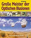 Große Meister der optischen Illusionen: Von Arcimboldo bis Whistler - Al Seckel
