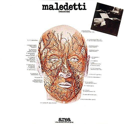 vinyl-lp-maledetti-maudits
