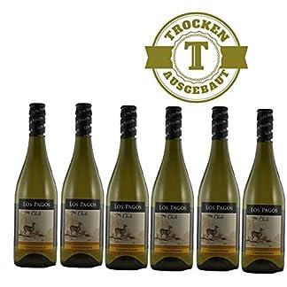 Weiwein-Chile-Chardonnay-Valle-Central-trocken-2014-6x075l