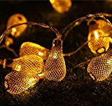 Best Outdoor String Lights - Pragart New Waterdrop String 16- Led Decorative Light,Warm Review