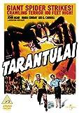 Tarantula [Import anglais]