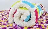 Global- Winter Doghouse Matte / Lamm Kaschmir Blanket / Pet Blanket Quilt / Puppies Decke Katze Steppdecke / Widerstand zu beißen starke dicke Baumwolle Pad ( größe : 55*42cm ) - 2
