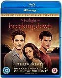The Twilight Saga: Breaking Dawn - Part 1 (Single Disc) [Blu-ray]