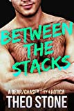 Between the Stacks (Hairy Gay Bear/Chaser Erotica) (English Edition)