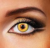 Funky Vision Kontaktlinsen - 3 Monatslinsen, Gold Vampire, Ohne Sehstärke, 1 Stück