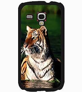 ColourCraft Tiger Look Design Back Case Cover for SAMSUNG GALAXY S3 MINI I8190