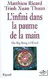 L'Infini dans la paume de la main : Du Big Bang à l'Eveil