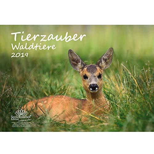 Tierzauber Waldtiere · DIN A3 · Premium Kalender 2019 · Reh · Wild · Fuchs · Hase · Eichhörnchen · Wald · Natur · Tiere · Edition Seelenzauber
