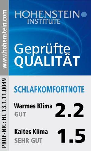 200 x 200 cm Badenia Bettcomfort Steppbett Irisette de luxe Mono, weiß – verschiedene Größen - 7