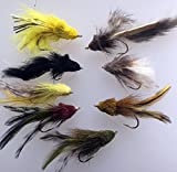 Angeln Bass Pike Fliegen Stealth Taucher Acht Salzwasser Bass Forelle Zander Chub # div3