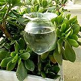 HWTOP Haushalt & Wohnen Automatische Bewässerung Bewässerungskugel Bewässerungsvorrichtung Blumen Glasgartenpflanze Bewässerung Bewässerungsgerät Sprinkler