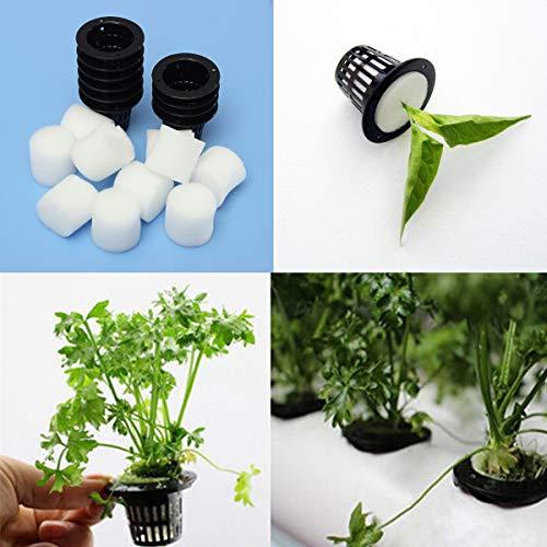 EsportsMJJ Noir Plastique Mesh Pot Hydroponique Aeroponic Plante Grandir Net Fleur De Jardin Clone - #1