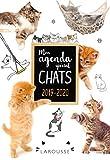 Agenda scolaire Chats