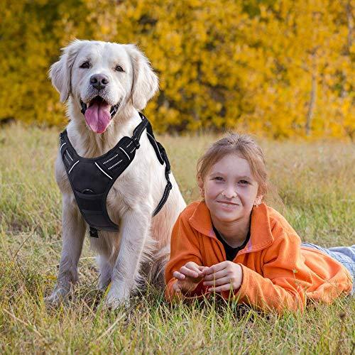 Rabbitgoo No-Pull-Hundegeschirr einstellbar weich Hundegeschirr Haustier einfach sicher Kontrolle Körper bequem Hunde Leine für kleine Hunde schwarz 3 Größe - 2