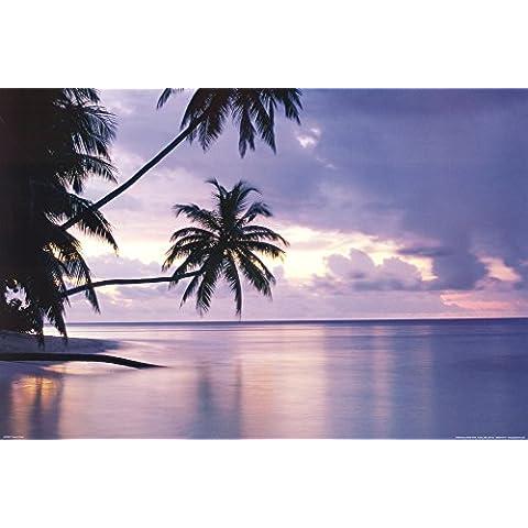 Puesta del sol tropical (Palmeras sobre agua) Póster