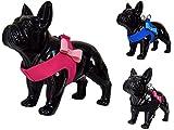 Cute Fliege Dog Pet Harness von lushpetz Designs für XSmall und kleine Hunde Rasse mit passender Leine Set erhältlich