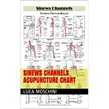 Sinews Channels Acupuncture Chart (English Edition)