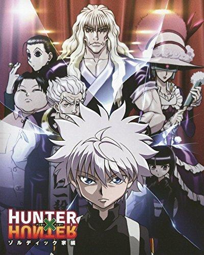 Hunter X Hunter Poster Anime Neferpitou Gon Killua Fight Art Print 16x20 Inches by Superior Posters