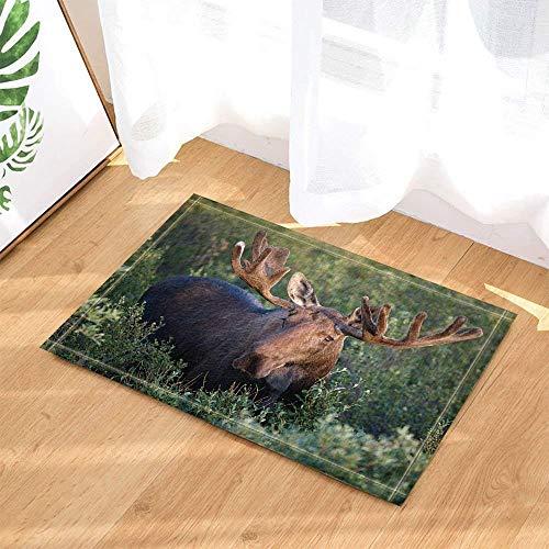 fdsdatrfet Green Forest Meadow Kaffee Hirschhorn Tier Bad Anti-Rutsch-Matte Schimmel Bad Bad Matte Bad Anti-Rutsch-Schutz für Kinder Schnell trocknende Falt-Badematte -