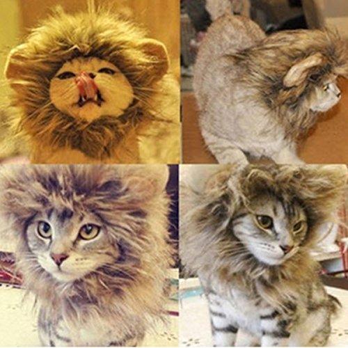 S Haustier Hund Katze künstliche Löwe Mähne Perücke Halloween Kostüm (Farbe: Grau)
