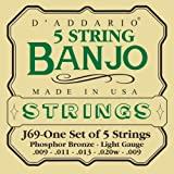 D'Addario J69 Saitensatz für Banjo 5-String und Tenor 5-String/Light/Phosphor Bronze