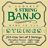 D'Addario J69 Saitensatz für Banjo 5-String und Tenor 5-String/Light/Phosphor Bronze