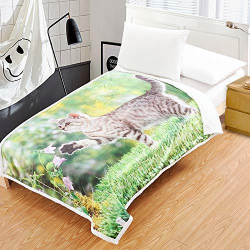 Home Sherpa Decke Flanell Fleece Digitaldruck Wende-Decke Superweiche, leichte Decke Warme Ganzjahresdecke aus Mikrofaser für Bett oder Couch, Sunshine Kitty, 51