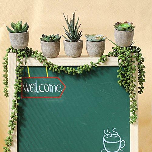 5er Set Sukkulenten 7 x 8cm Kunstpflanze Grün Weiß Kunstblume Deko mit grauen Töpfen - 3
