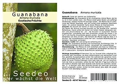 Seedeo Guanabana Annona muricata 13 Samen von Seedeo - Du und dein Garten