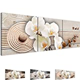 Bilder 120 x 40 cm - Orchidee Bild - Vlies Leinwand - Kunstdrucke -Wandbild - XXL Format – mehrere Farben und Größen im Shop - Fertig Aufgespannt !!! 100% MADE IN GERMANY !!! - Blumen – Abstrakt 205233c