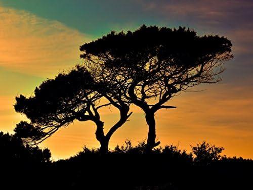 Vous êtes en bonne santé pour la nouvelle année. Lais Puzzle Chypre 1000 Pieces | Une Bonne Réputation Dans Le Monde Entier